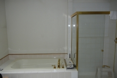 Bellevue Master Bath Remodel - Tub & Shower Wall Before