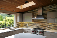 Hunts Point Modern Kitchen Remodel