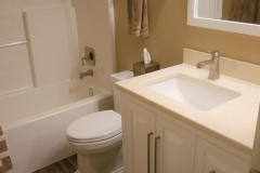 Bellevue Transitional Guest Bathroom Remodel