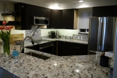 Kirkland Transitional Condo Kitchen Remodel