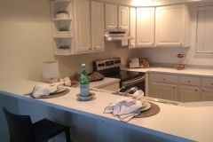 Kirkland Transitional Condo Kitchen Remodel
