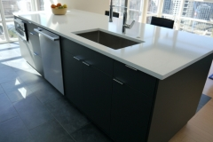 Seattle Modern Kitchen Reface