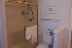 Shoreline Master Bath Remodel - Shower Before